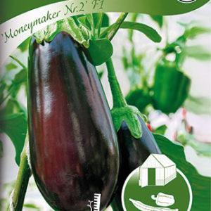 Aubergine, Moneymaker Nr.2 F1 - Solanum melongena
